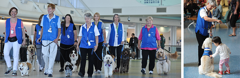 canine interaction program photo